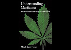 Understanding Marijuana