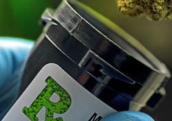 Bottling cannabis bud for testing