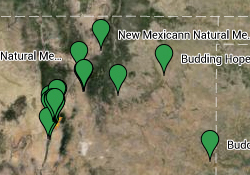 Map of NM cannabis dispensaries