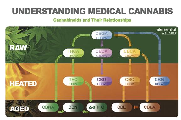 cannabinoid chart