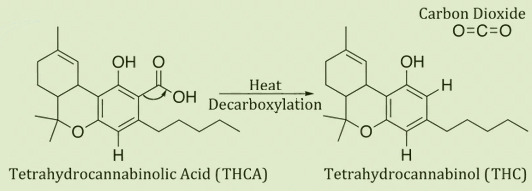 THC and THCa molecules
