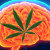 Marijuana Leaf Brain